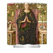 The Immaculate Conception Shower Curtain