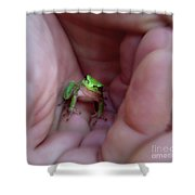 The Introduction Shower Curtain