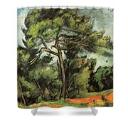 The Large Pine Shower Curtain