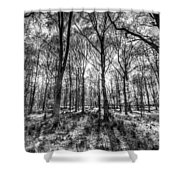 The Monochrome Forest Shower Curtain
