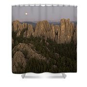 The Needles Protrude From Forests Shower Curtain