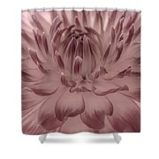 The Painted Flower Shower Curtain