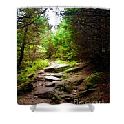 The Path To Righteousness Shower Curtain
