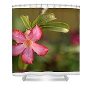 The Pink Wonder Shower Curtain