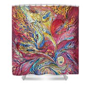 The Red Scirocco Shower Curtain