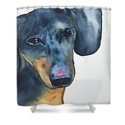 The Rescue Shower Curtain