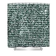 The Rosetta Stone Shower Curtain