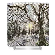 The Snow Forest Art Shower Curtain