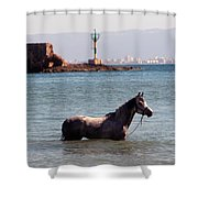The Swim Shower Curtain