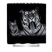 The Two Of Us Shower Curtain