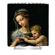 The Virgin Of The Rose Shower Curtain