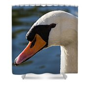The Watchful Swan Shower Curtain