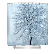 The Winter Tree  Shower Curtain by Lori Frisch