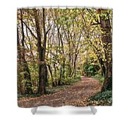 The Woods In Autumn Shower Curtain