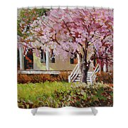The Yellow Porch Shower Curtain