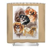 Tibetan Spaniel W/ghost Shower Curtain