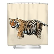 Tiger In The Long Grass Shower Curtain
