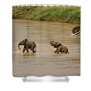 Tiny Elephants Shower Curtain
