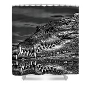 Toothy Grin Shower Curtain