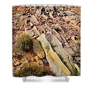 Tracks Of Color In Valley Of Fire Shower Curtain