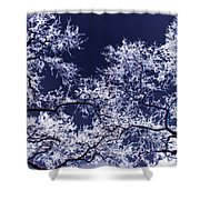 Tree Fantasy 17 Shower Curtain