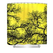 Tree Fantasy 18 Shower Curtain
