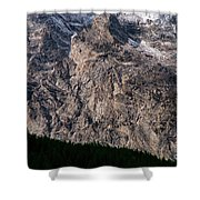 Teton Tree Line  Shower Curtain