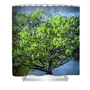 Tree On The Bank Shower Curtain