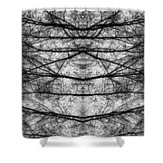 Forest Of Seperation Shower Curtain
