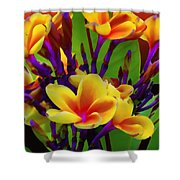 Tropical Warmth Shower Curtain