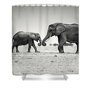 Trunk Pumping Elephants Shower Curtain
