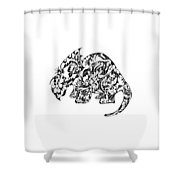 Try Sarah Tops Shower Curtain