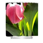 Tulip 2 Shower Curtain