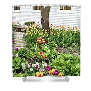 Tulips In The Garden Shower Curtain