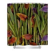 Tulips Wilting Shower Curtain