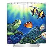 Turtle Dreams Shower Curtain
