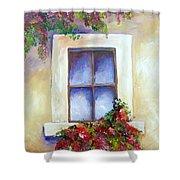 Window Box Shower Curtain