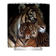 Twin Souls Shower Curtain