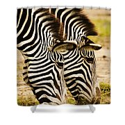 Twins In Stripes Shower Curtain