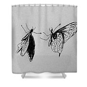 Two Butterfly Shower Curtain