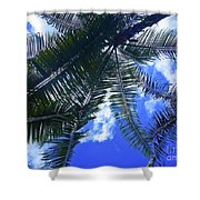 Under The Palms Shower Curtain