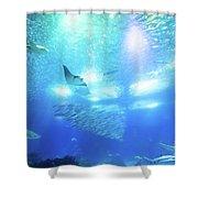 Undersea Deep Background Shower Curtain