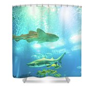 Undersea Shark Background Shower Curtain