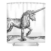 Unicorn, 1607 Shower Curtain