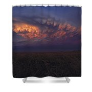 United States, Kansas,  Wheat Field Shower Curtain