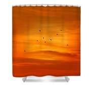 Upon A Sunset Flight Shower Curtain