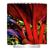 Variegated Ti Leaves Shower Curtain