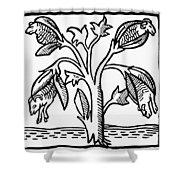 Vegetable Lamb Myth Shower Curtain