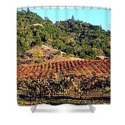 Vineyard 3 Shower Curtain