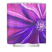 Vitality Shower Curtain
